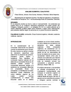 Analisis Elemental Cualitativo Original