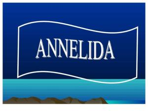 Annelida ( Power Point )