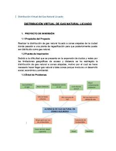 Distribución Virtual de Gas Natural Licuado Informe