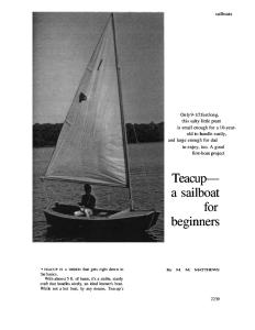 Teacup Sailboat